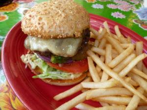 Burger at Putah Creek